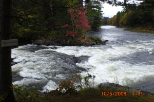 Muskoka river with fall colours