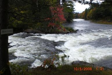 Muskoka river with fall colours
