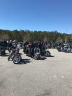 Destination Harley