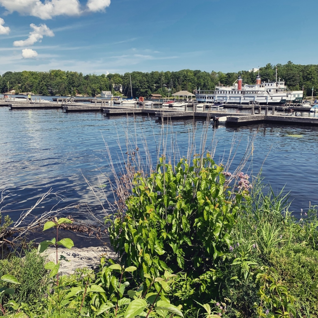 View looking out on  Muskoka Wharf  docks boats and the RMS Segwun
